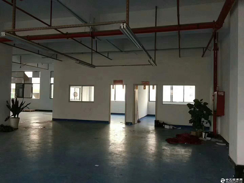 坪山坑梓新出二楼厂房800平方米大小分租带红本,200平起分
