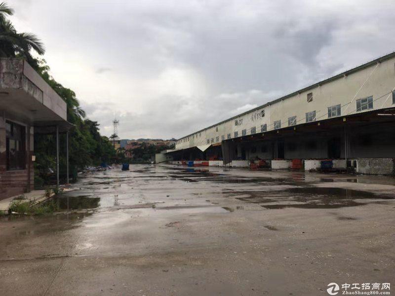 坂田原房东滴水12米20000平物流仓库可分租