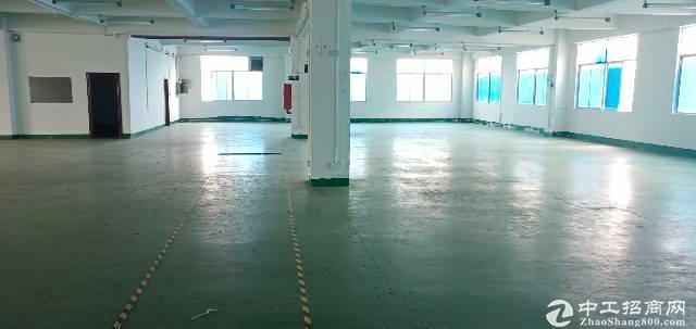 坂田高实用率办公厂房仓库100平至800平出租