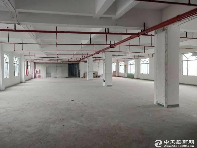 龙华深圳北站新出1000平厂房仓库出租,200平起租。