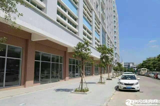 [特价]西丽新厂房带装修无转让费楼上1000平厂房出租