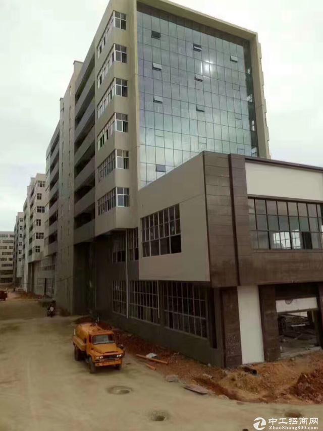 [特价]西丽留仙洞新出厂房800平 带装修 有办公室图片4