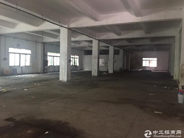 [特价]西丽留仙洞新出厂房800平 带装修 有办公室图片3