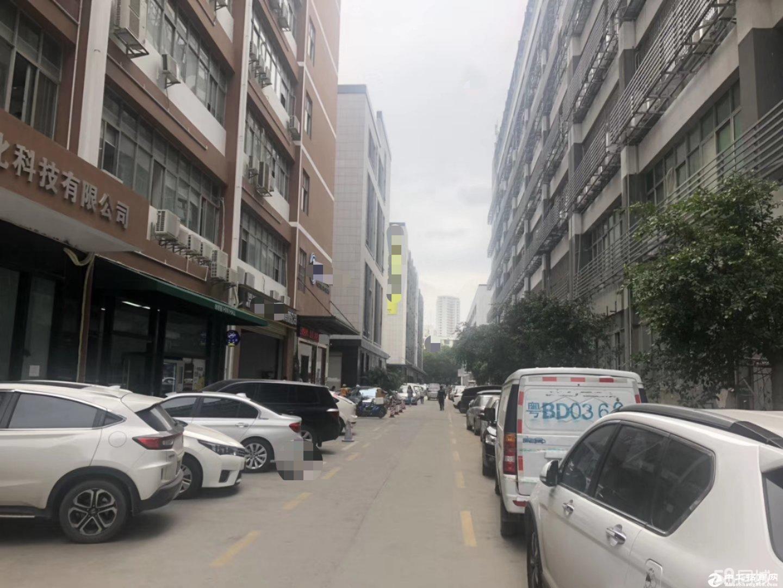 [特价]西丽九祥岭一楼380平仓库出租图片1