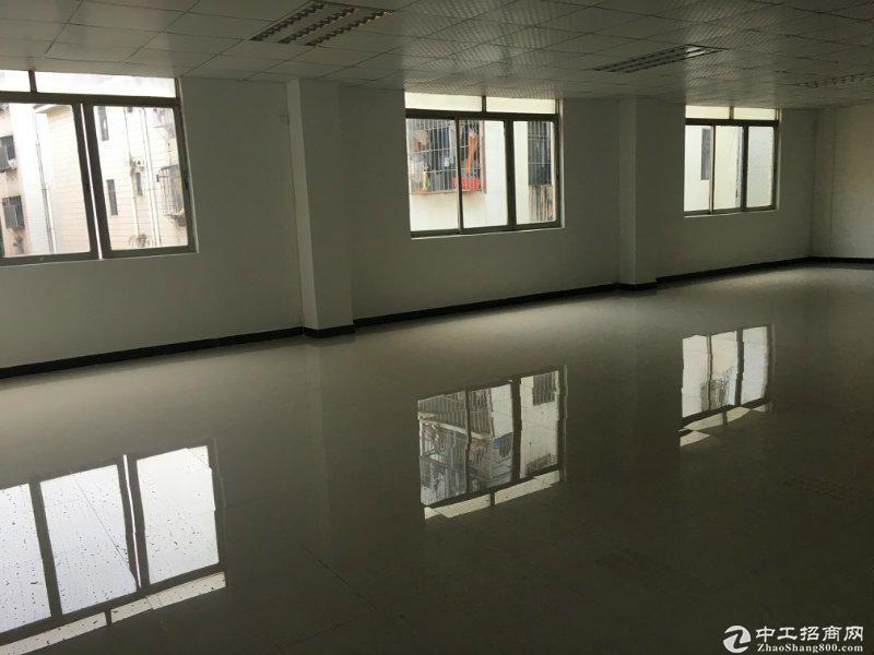 特价西丽地铁站小面积120,200平办公仓库水电齐全图片2