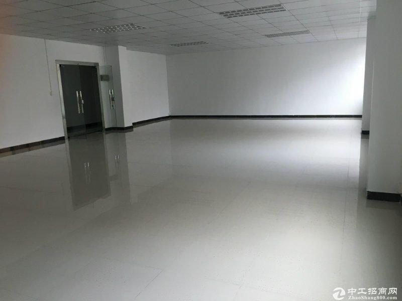 特价西丽地铁站小面积120,200平办公仓库水电齐全图片3