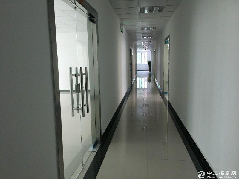 特价西丽地铁站小面积120,200平办公仓库水电齐全图片5