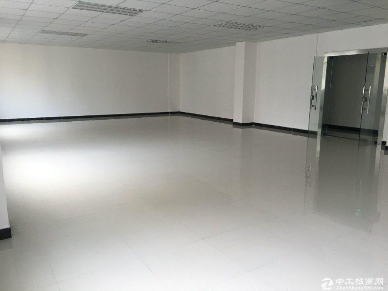 特价西丽地铁站小面积120,200平办公仓库水电齐全-图4