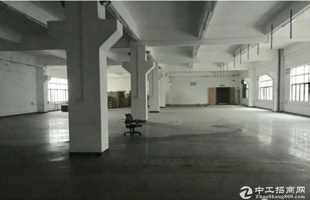 龙岗全新红本厂房出租单层2500平5000平可分租!!!
