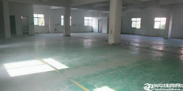 [特价]石岩原房东一楼楼上300到2800可分租精装修厂房