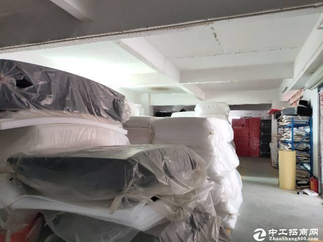[特价]石岩龙大高速550平仓库低价出租