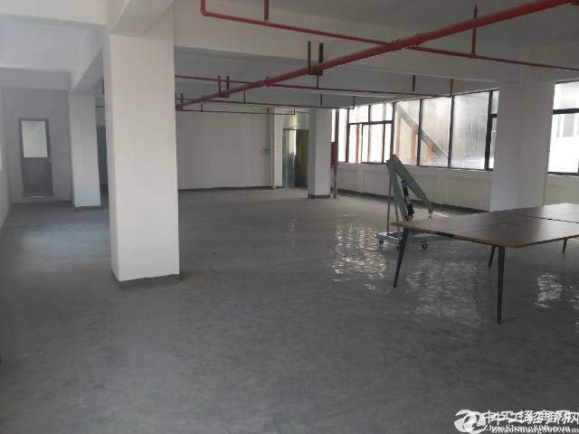 坪山大工业区新产业园楼上260平精装修厂房无转让费出租