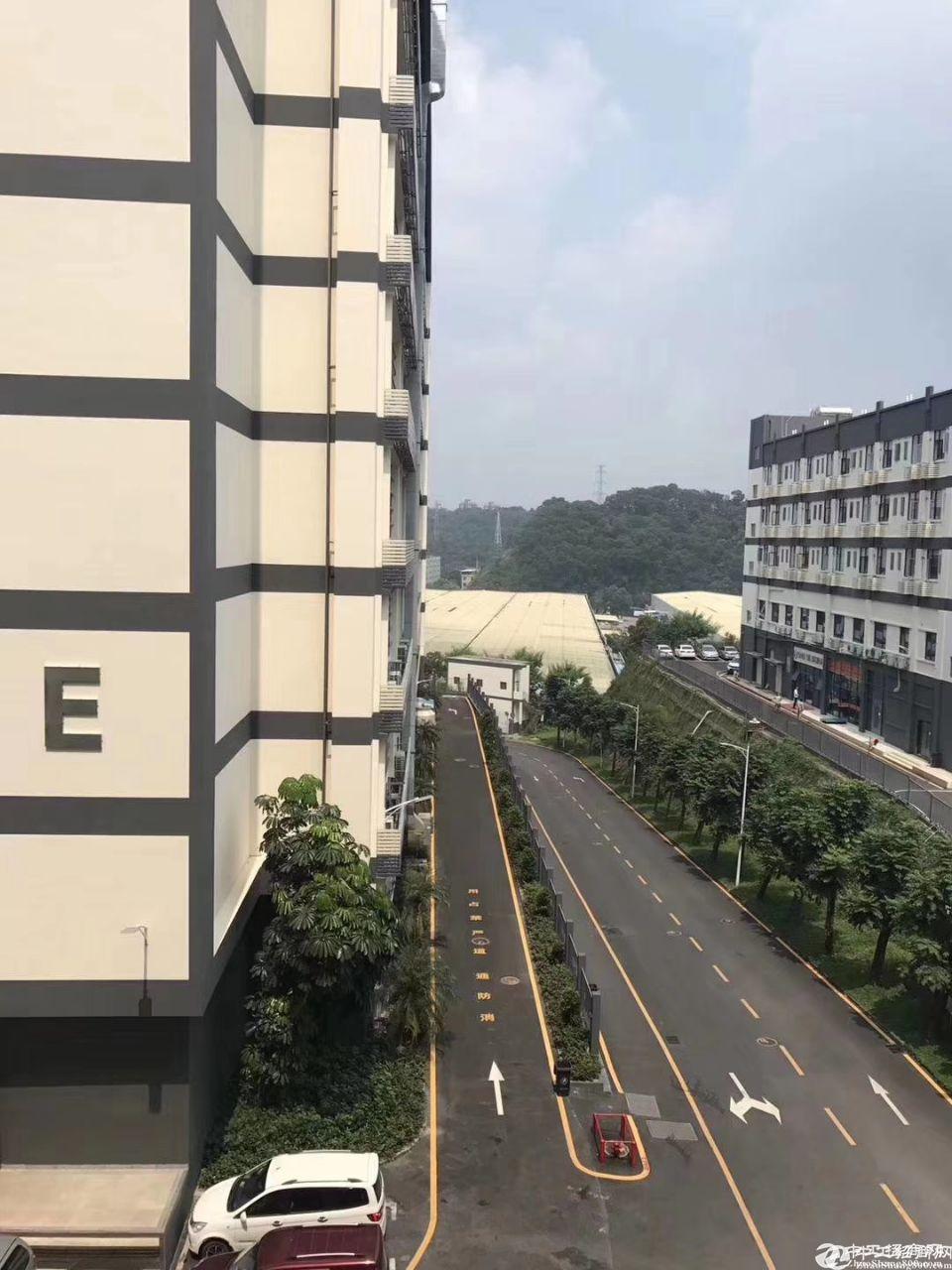 坂田杨美带现成办公室一楼整层2200平方出租适合物流仓储