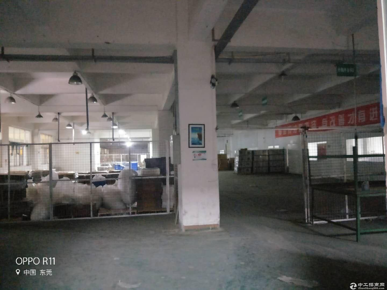 东莞市横沥镇田饶步标准独院分租二楼整层1500平方米-图3