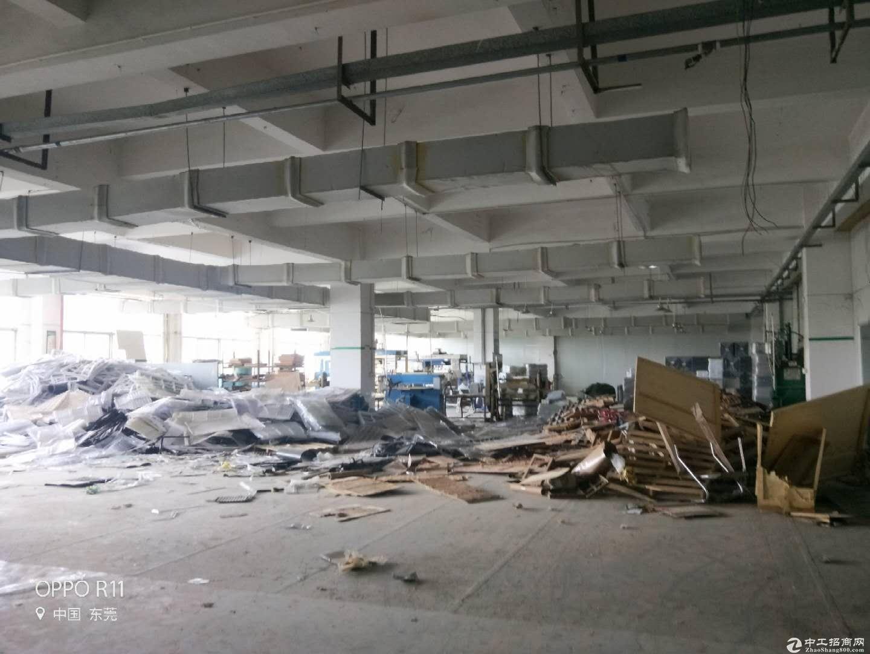 东莞市横沥镇田饶步标准独院分租二楼整层1500平方米-图5