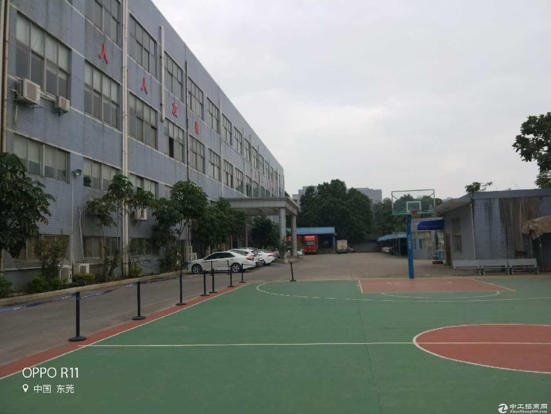 东莞市横沥镇田饶步标准独院分租二楼整层1500平方米-图6