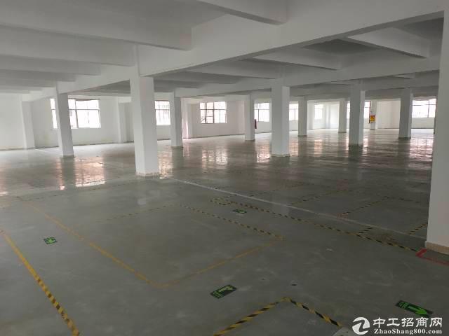 龙华新出独栋厂房仓库2300平招租,面积200平起租。