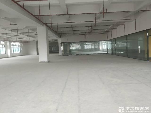 龙华民治地铁口新出仓库2000平招租,面积200平起租。