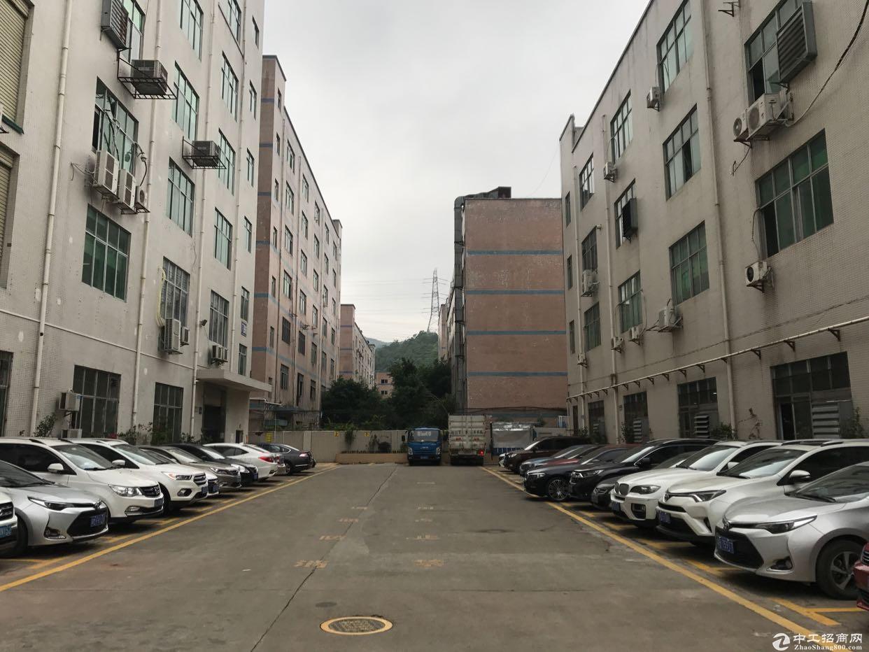 龙华大浪白云山附近新出1500平厂房仓库出租,面积大小200平起租。