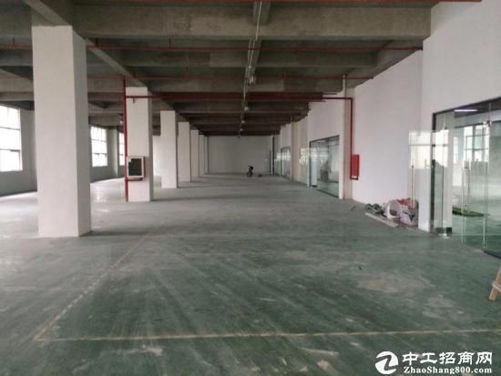 石岩溪之谷高速出口厂房招租1600平方带装修