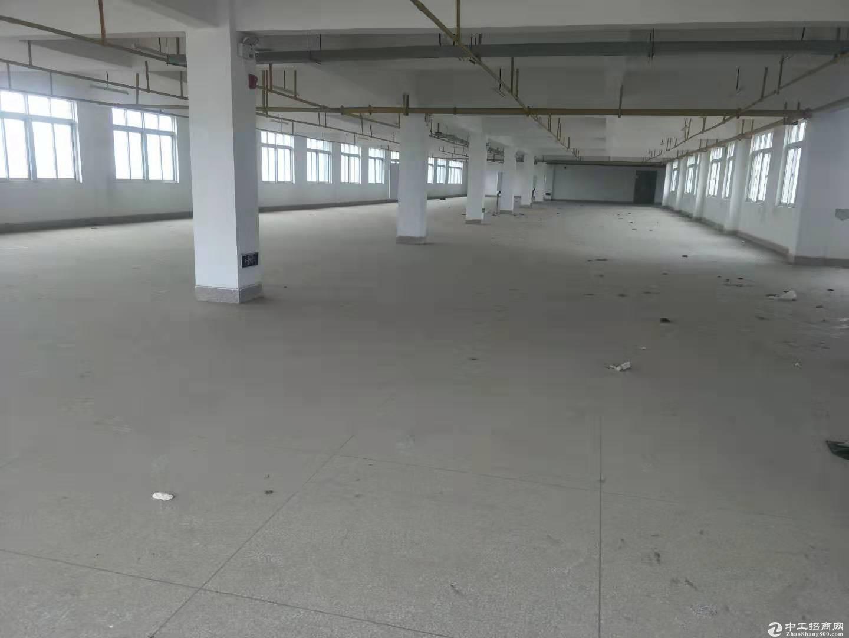 厂房1950平米,黄金口工业园,交通便利配套齐全,可分租