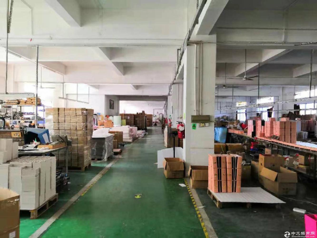 坂田1100平米精装修红本厂房出租,环境优美,可过环评朝东南
