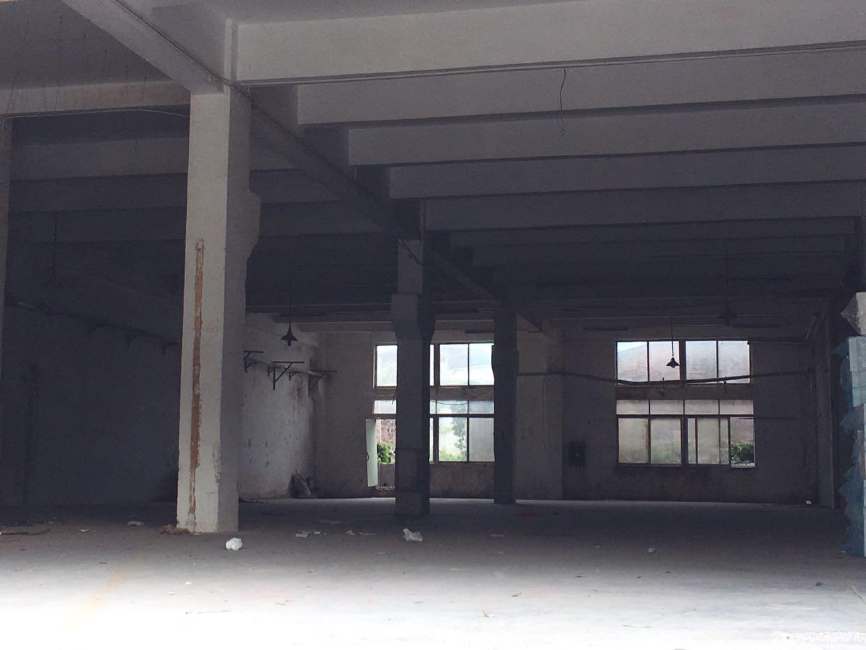 坪山坑梓标准仓库带卸货平台1200平原房东出租