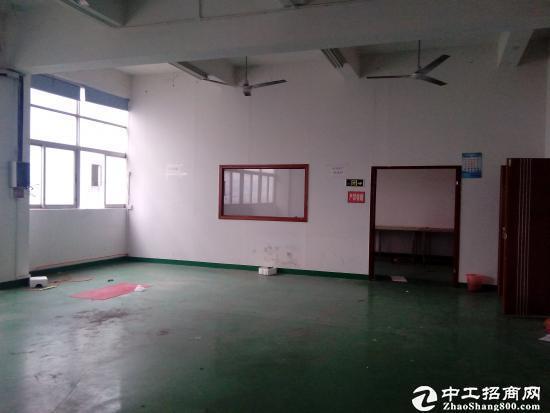 南山西丽牛成村工业园区1350平方厂房招租图片2
