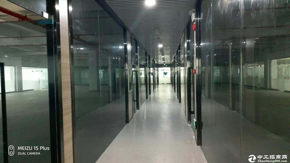 南山西丽大学城分租1500平厂房出租