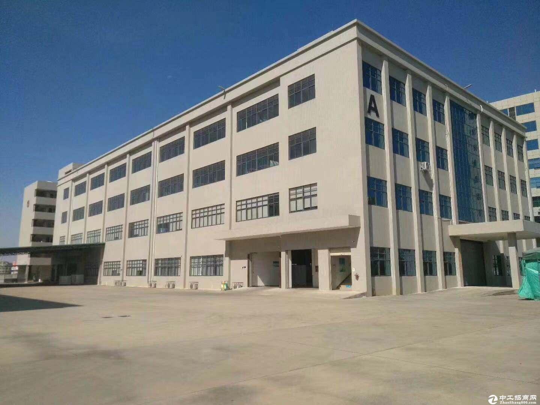 坪山 三洋湖工业区 厂房及仓库 1100平米,面积实在价格合适