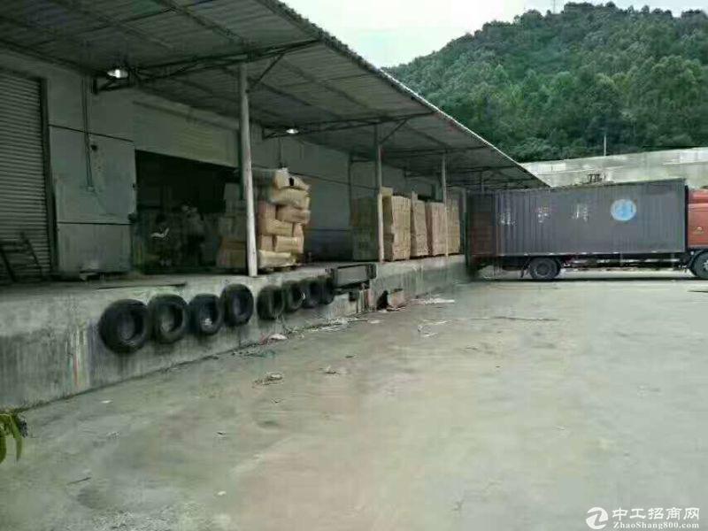 盐田带卸货平台5000平物流仓出租带有食品许可证