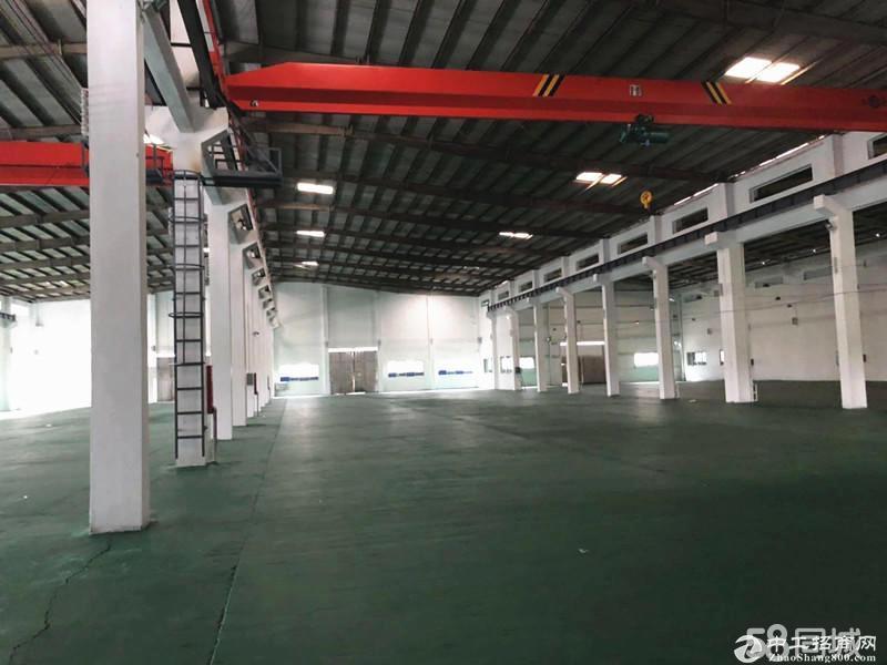 番禺区南村钢构独院1650平方厂房仓库出租形象好带红本可环评
