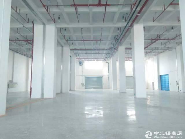 番禺钟村标准园区一楼1800方厂房仓库出租,层高6.5米