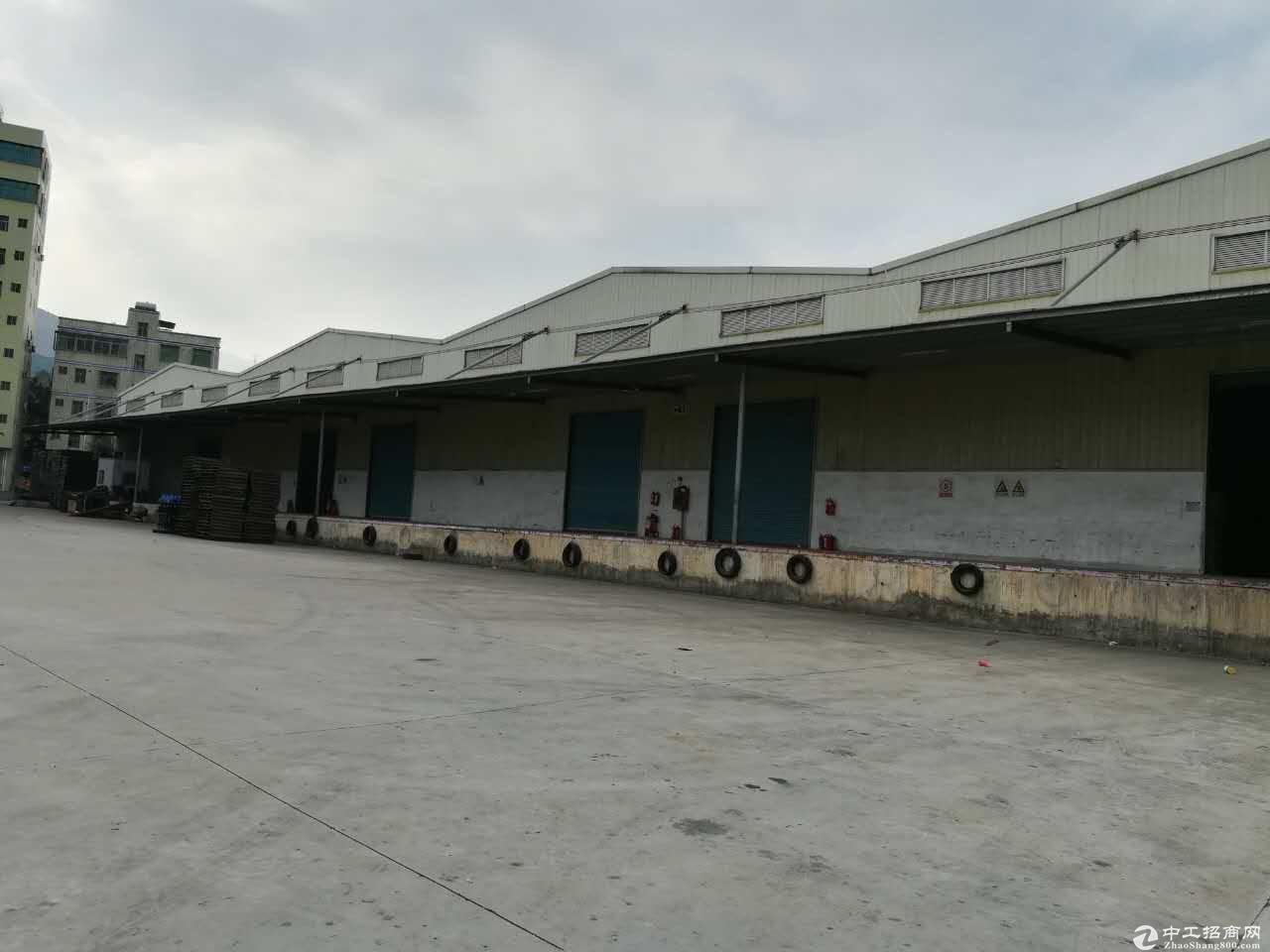 盐田港12000平专业物流仓招租,层高8米可日租可月租,可分租可整租-图2
