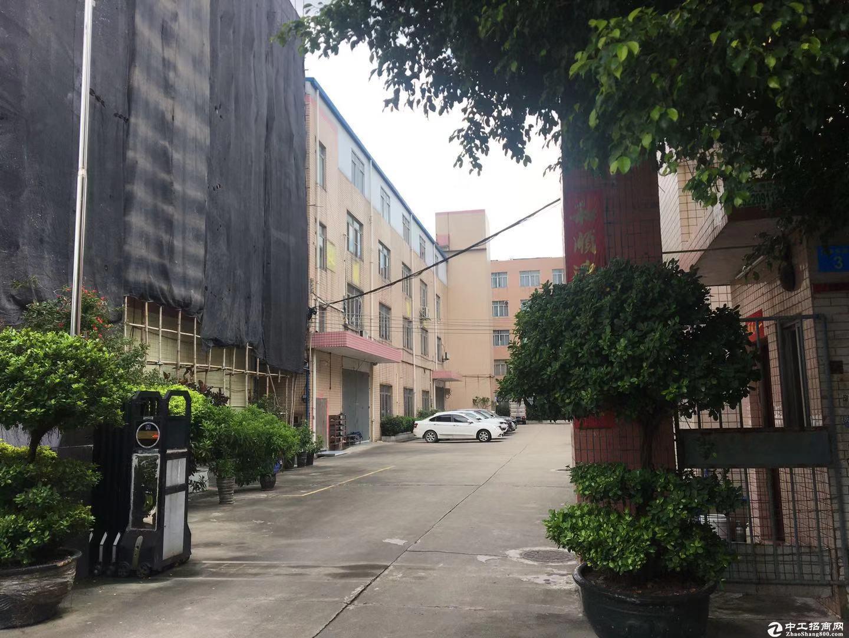 厚街镇双岗村家具大道附近原房东标准厂房仓库出租、证件齐全、形象好、