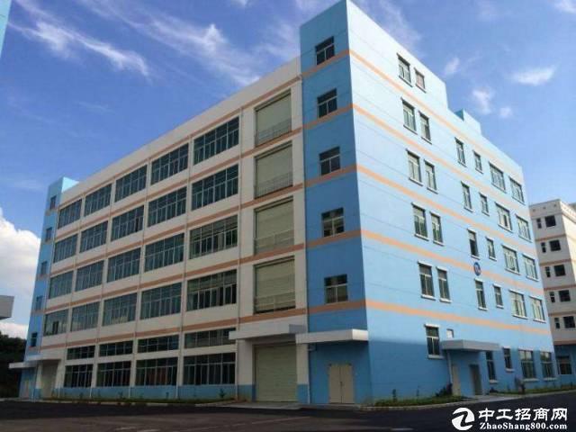 厚街镇双岗村家具大道附近共6000方二楼六楼只做仓库形象靓丽