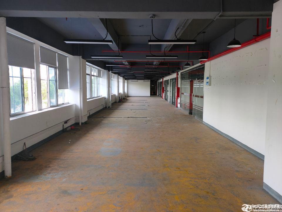 龙华富士康园区新出775平精装厂房仓库招租,面积大小200平起租。