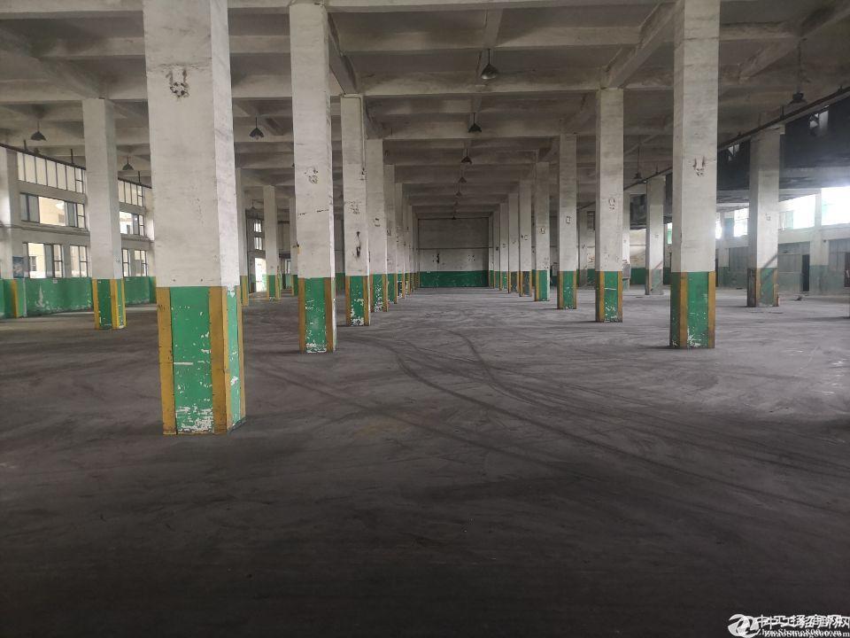 厚街镇厚街村厂房仓库3100平出租,可做生产,可分租