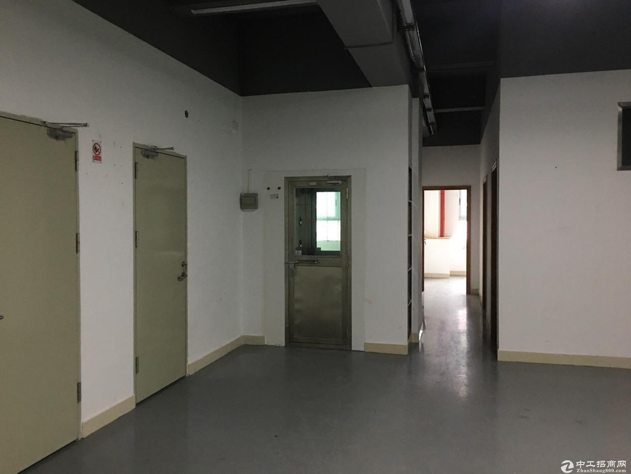 清湖梅关高速出入口,带装修红本厂房3000平租大小可分租