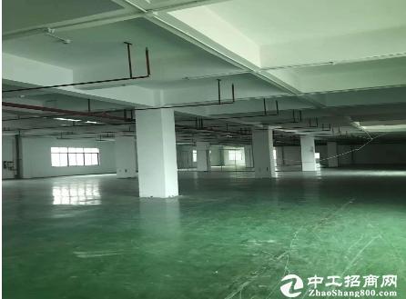 布吉木棉湾地铁站附近900平厂房仓库200平起租可办环评
