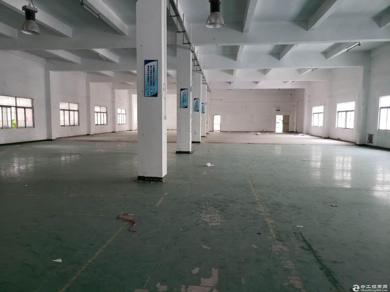 布吉上水径工业区大量200到2000平厂房仓库出租带消防喷淋