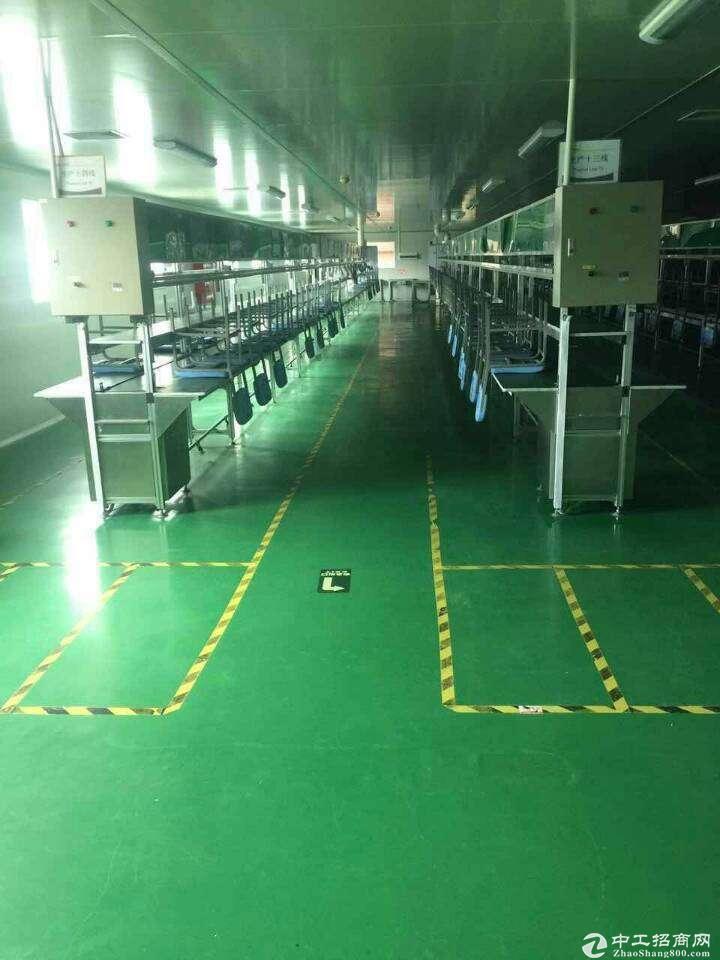 龙岗南联电商办公仓库200到2000平方精装修厂房出租 可以分租