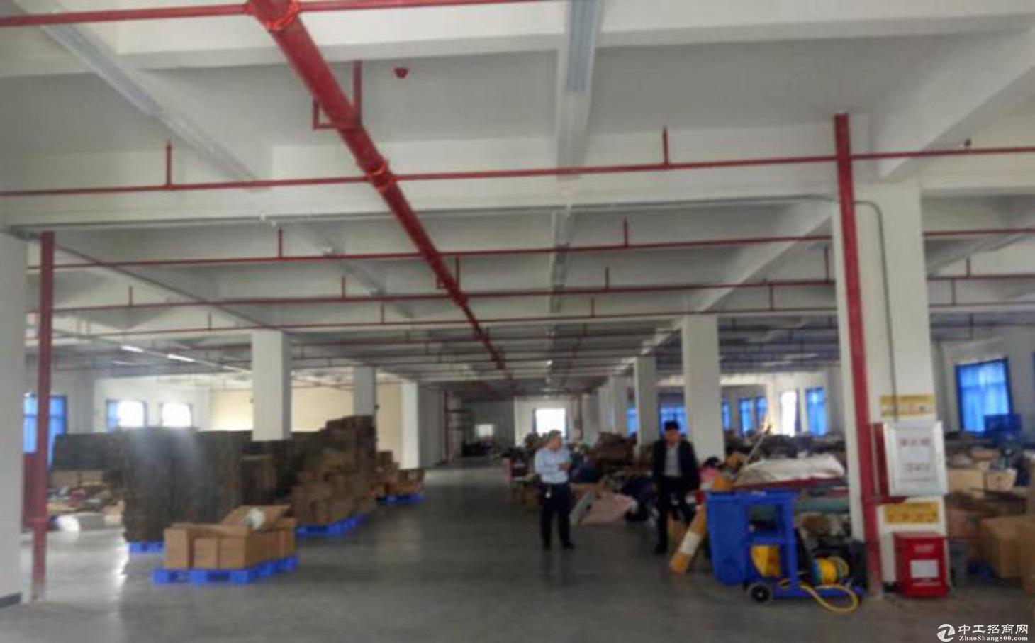 惠阳 大亚湾全新标准厂房1楼3400平出租,有红本,能办环评