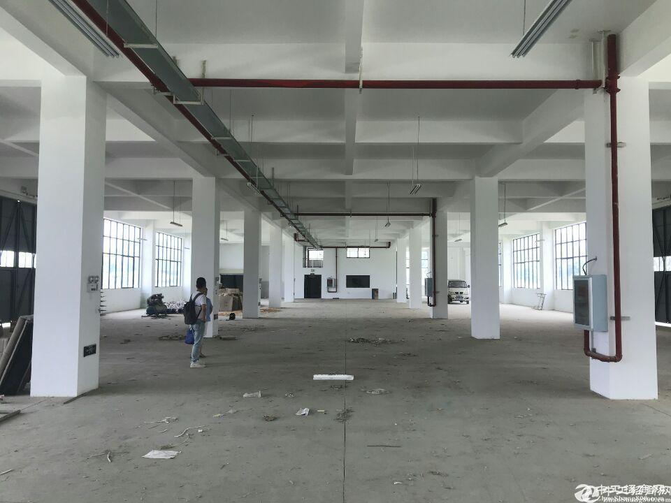 阳逻7000平米厂房,独栋仓库,配套宿舍办公食堂,可分租