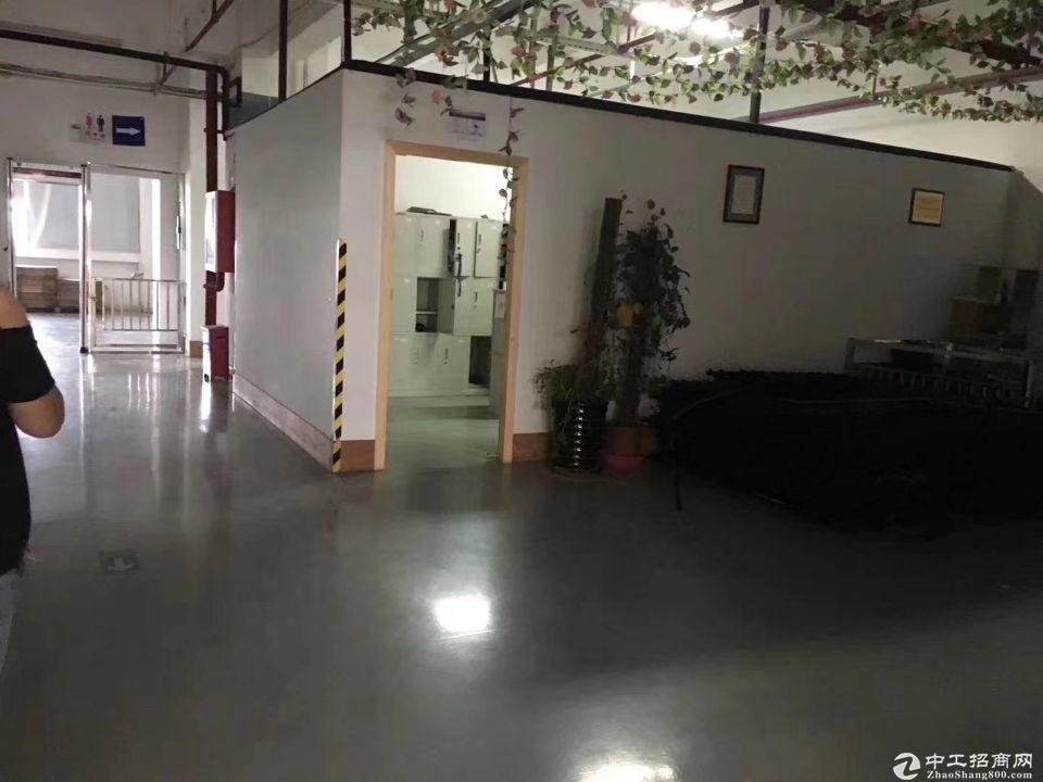 华南城电商园精装修200平、300平办公仓库出租