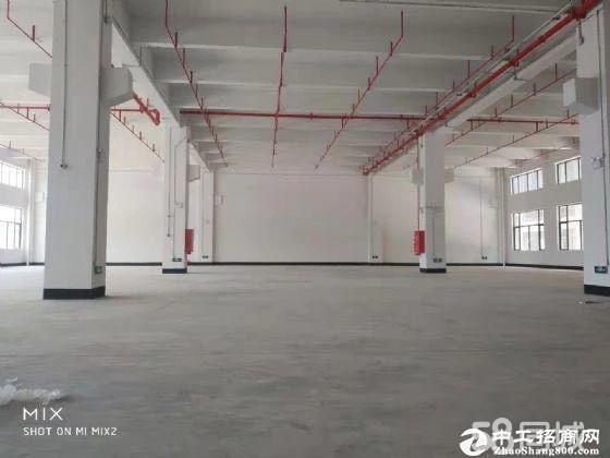 江高简易厂房出租,面积1300平方,带独立办公。厂房中高9米,滴水8
