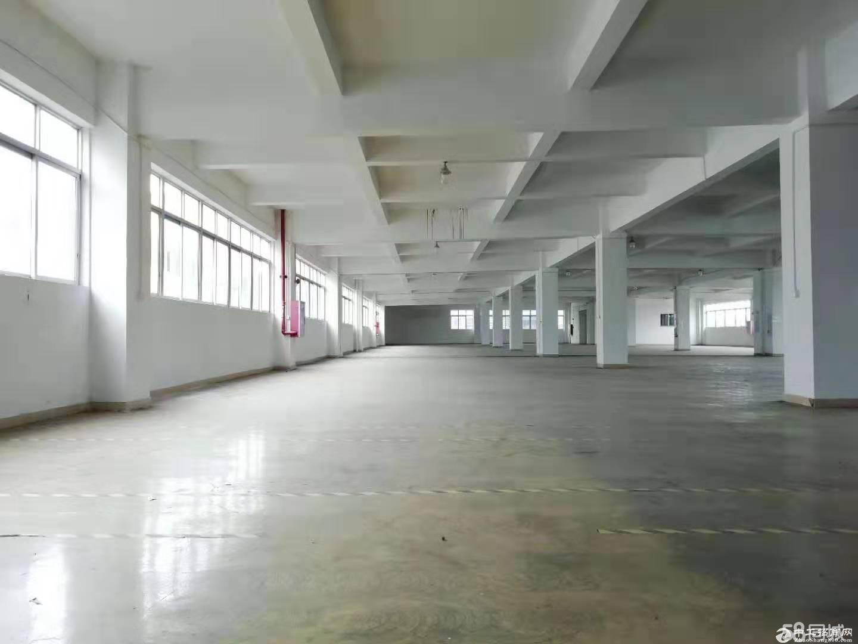(出租) 大石主干道大型园区标准1800方服装基地可做电商生产仓库