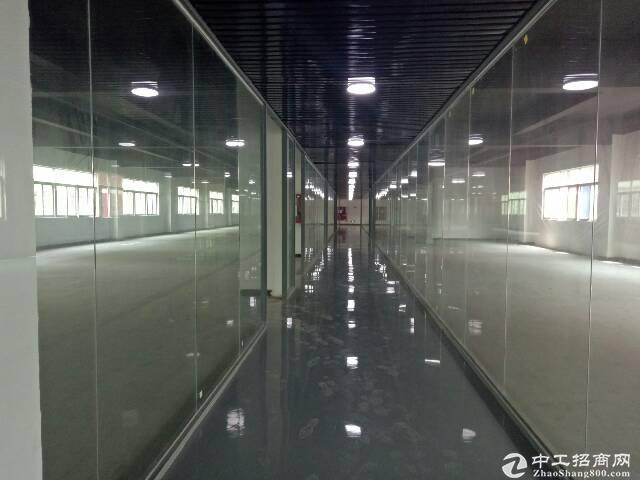 龙华大浪福龙路口新出楼上600平厂房办公仓库招租