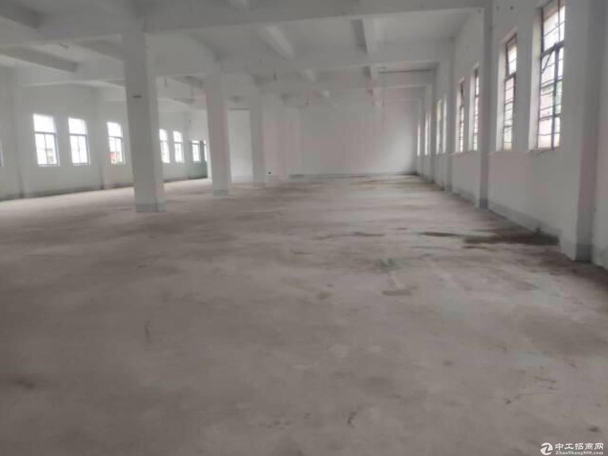 惠州独门独院标准厂房3000㎡带宿舍出租