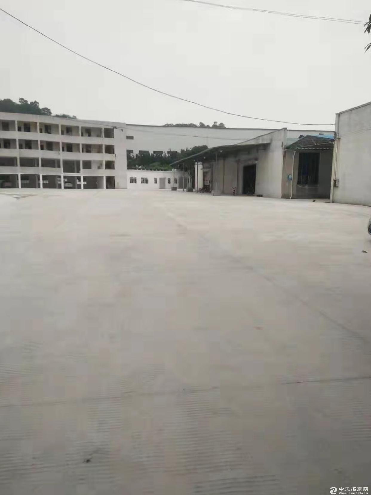 广州黄埔区文冲新出钢结构厂房21700平,大小都可分,空地大